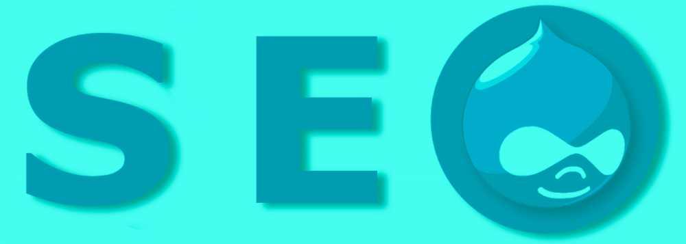 Com treballar el SEO del meu projecte web Drupal?